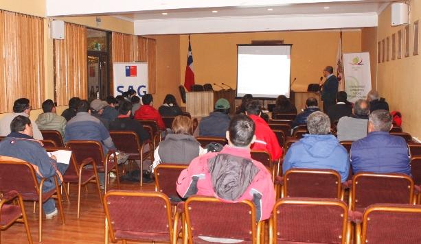 SAG y Comité del Kiwi realizaron taller para explicar control de bacteria PSA a productores en San Fernando