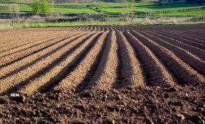 INDAP O´Higgins llama a pequeños agricultores a postular a beneficios