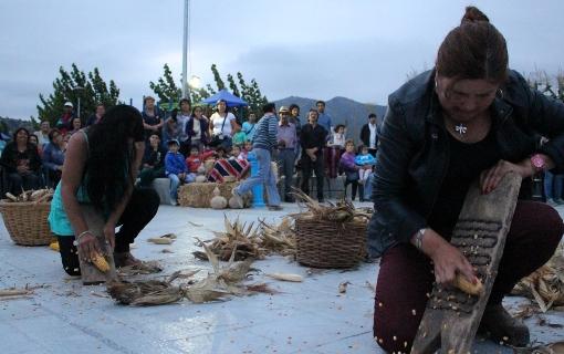 Pichidegua: capital de la artesanía en hoja de Choclo