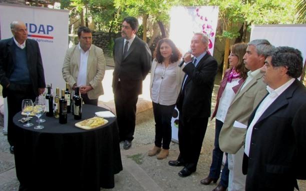 Lanzamiento de primera fiesta  de la vendimia campesina en Palmilla