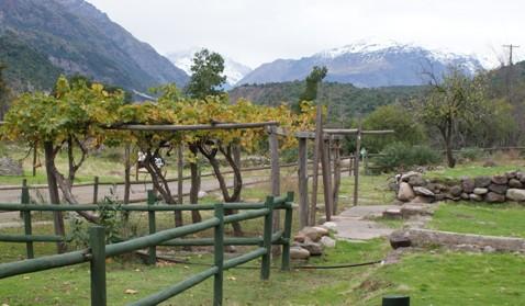 CONAF celebra el día del Patrimonio con pase libre a Reserva Nacional Río de Los Cipreses