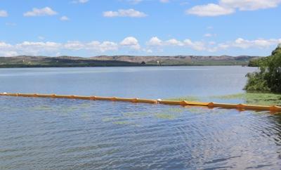 Mesa Técnica evaluó intervención piloto para contener Bloom de algas en Rapel