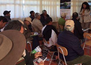 Mayor capacidad de negociación  para gestión de pequeños productores hortícolas de Cachapoal