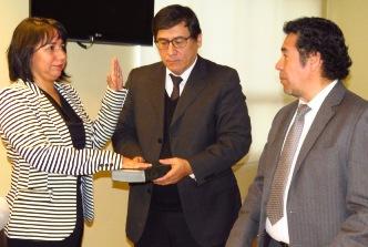 Jura nueva jueza titular del Juzgado de Garantía de San Fernando