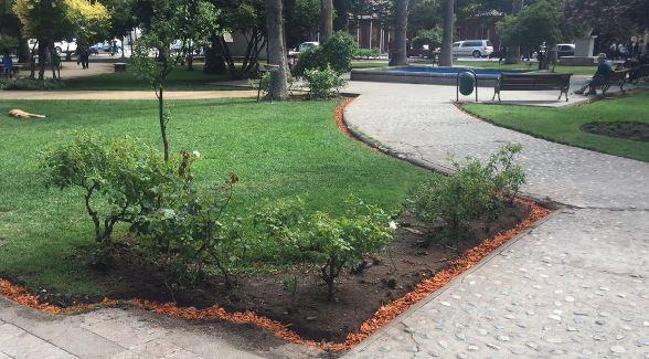 Justicia rechaza millonaria demanda interpuesta por Jaime Ramírez en contra de municipio de Santa Cruz