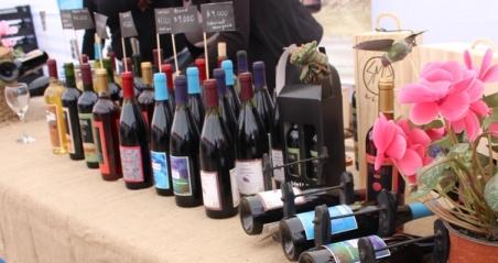 Con gran marco de público y excelente productos se destaca la Expo Vinos Gourmet en Rancagua