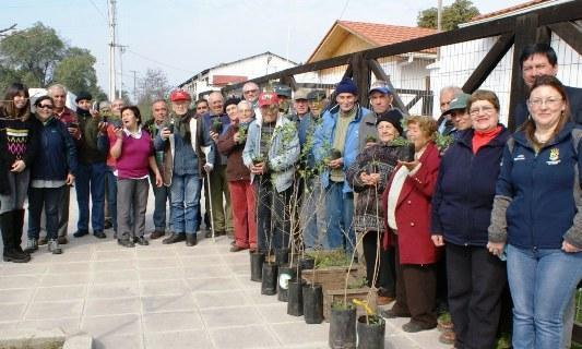 CONAF dona 80 plantas medicinales a Centro Diurno del Adulto Mayor de Peumo