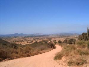 Firma permite liberar US$10 millones para el agro del Secano de la Región de O´Higgins