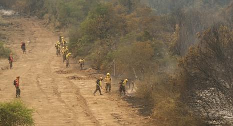 Refuerzo internacional para el combate de los incendios forestales comienza a materializarse
