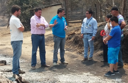 SENADIS informa sobre acciones realizadas en zonas afectadas por incendios forestales
