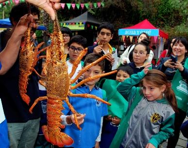 Invitan a organizaciones de pesca artesanal a postular en concurso para ser parte del festival de cocina ÑAM Santiago 2017
