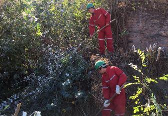 Minuto Verde colabora en la limpieza de canal La Palma