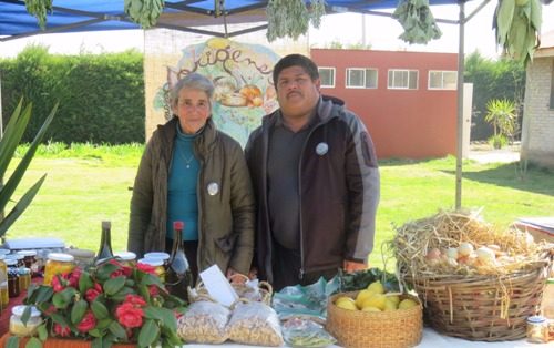 Seminario sobre experiencias en turismo rural se realiza por segunda vez en Codegua
