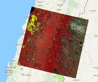 Gobierno lanza sistema de monitoreo satelital para vigilar bosques de Chile