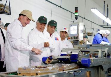 MINAGRI destaca auspicioso escenario para la industria de las cerezas durante el inicio de la temporada de exportación