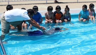 Rancagüinos asisten masivamente a natación en las piscinas municipales
