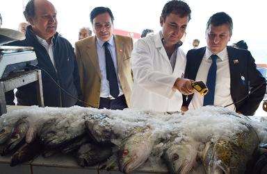 Pichilemu: Intendente lidera inicio de fiscalización sanitaria de pescados y mariscos