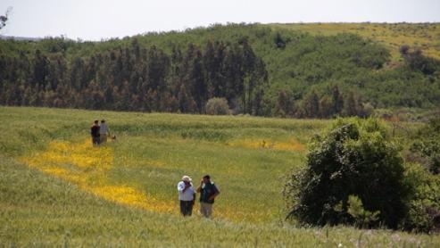 Hasta el 13 de abril se puede postular en la Región de O'Higgins a beneficio SAG para recuperación de suelos