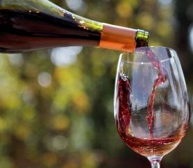 Concurso de SERNATUR busca experiencias y productos que aporten al turismo desde la gastronomía y el mundo del vino