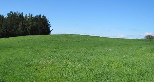 Minagri realiza millonaria inversión para mejorar suelos y praderas