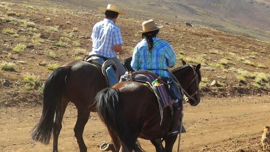 SERNATUR O'Higgins hace llamado para que servicios turísticos registrados actualicen sus patentes