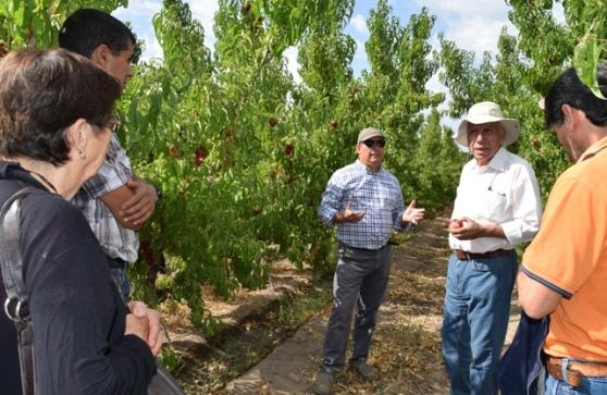 INIA entrega recomendaciones técnicas a productores para enfrentar temporada frutícola del próximo año
