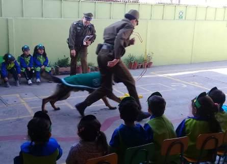 Patrullas Caninas de Carabineros visitan colegios de Rancagua