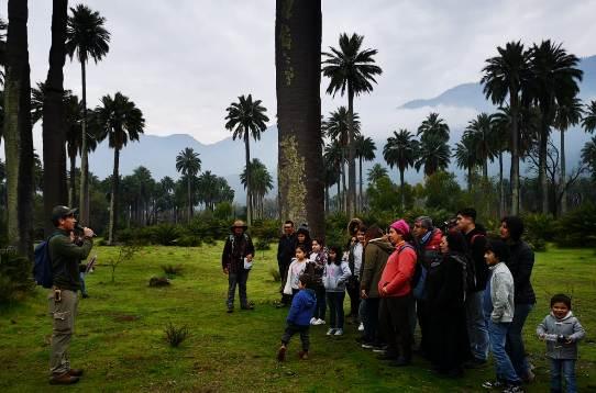 En Parque Nacional Las Palmas de Cocalán se dio el vamos a la nueva temporada del Programa Turismo Familiar de SERNATUR en O'Higgins