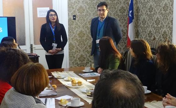 Equipos de Participación de O'Higgins y Maule abordan experiencias participativas en salud