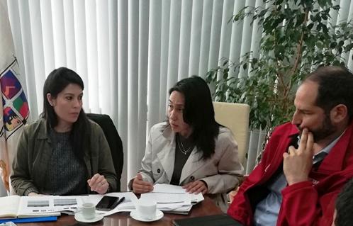 Directora regional de SernamEG hace llamado a denunciar los hechos constitutivos de violencia