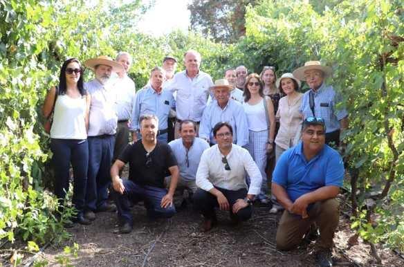 Ministro de Agricultura se reunió con pequeños productores vitivinícolas de Colchagua y los instó a asociarse