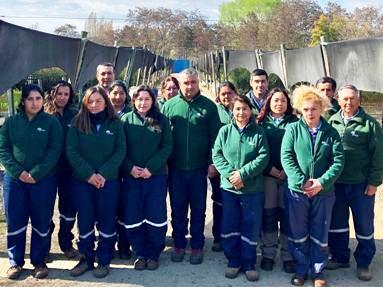 La gran meta de CONAF O´Higgins para dejar verdes las comunas de la región