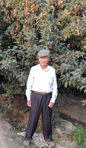 Destacan ejemplo de pequeño productor frutícola de Graneros que incorporó tecnología a su predio