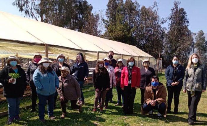Directora Nacional de PRODEMU visita a emprendedoras de Agua Buena que se destacan por proyecto de cultivo hidropónico