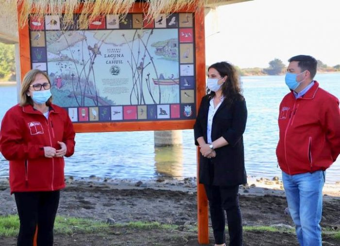 Cáhuil: buscan poner en valor las especies del humedal de la laguna
