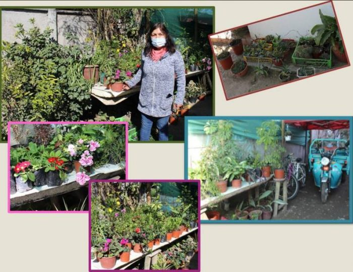 El Jardín de Margarita brilla en Requínoa