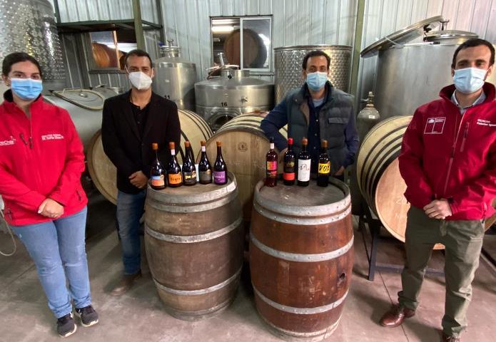 SEREMI del Trabajo y Pro Chile O'Higgins dan a conocer subsidio al empleo para el sector exportador de vinos
