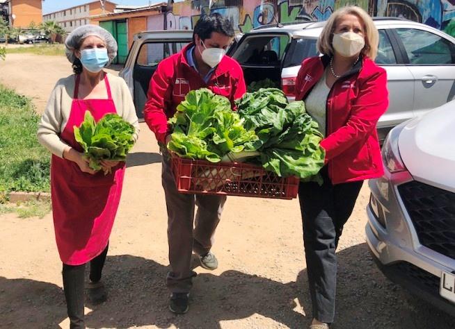 Entregan hortalizas a Comedor Solidario de Baltazar Castro de Rancagua