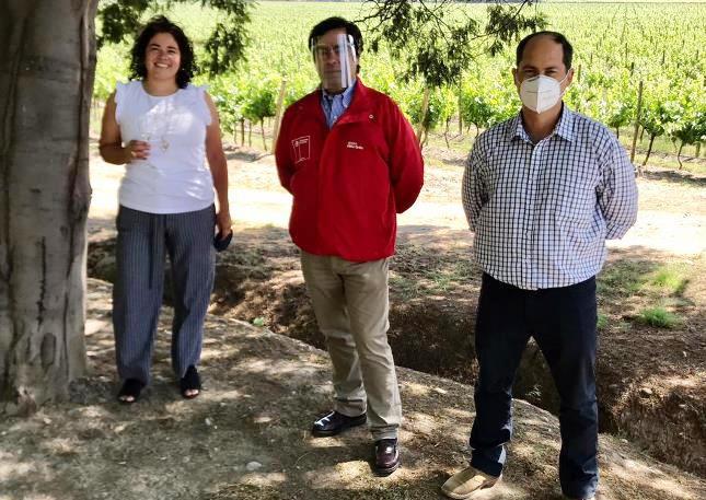 Enoturismo de Cachapoal deslumbró en los 25 años de Catad'Or Wines Award