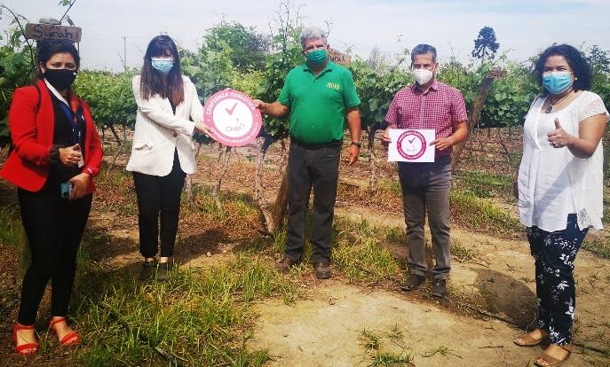 Viñas de Requínoa se adhieren a Certificado de Confianza Turística de SERNATUR