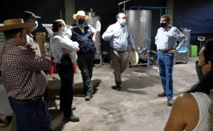 Asociatividad impulsa crecimiento de productores de quinua y vinos en O´Higgins con apoyo de INDAP