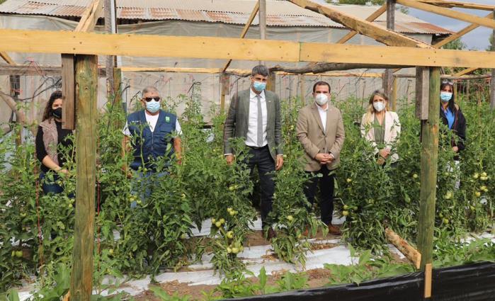 Intendente Guzmán y Ministro de Ciencia conocen experiencia de uso de tecnologías en la producción de hortalizas orgánicas