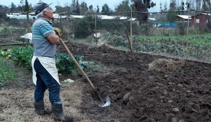 Gobierno Regional aprueba 500 millones de pesos para apoyar a pequeños agricultores afectados por la sequía